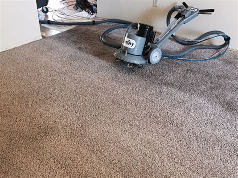 Carpet Cleaning Orange County The Best Carpet Cleaning