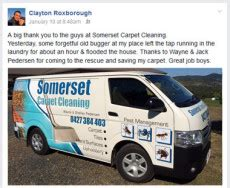 Carpet Cleaning Pest Control Kilcoy Woodford