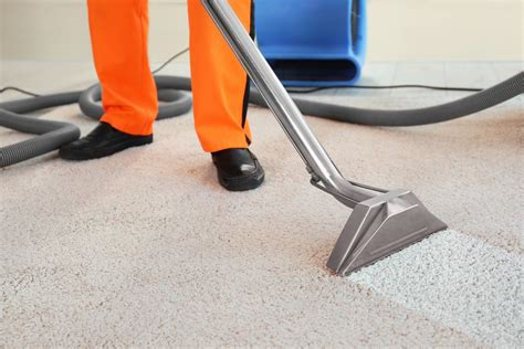 Carpet Cleaning Services in Oswego Experienced Cleaners