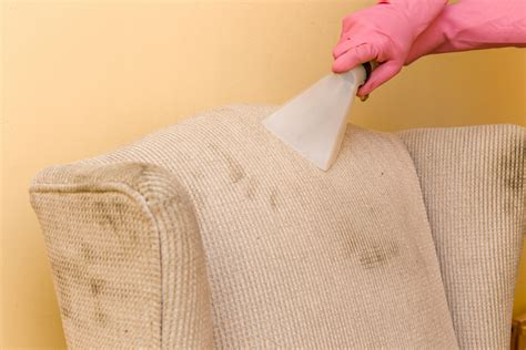 Carpet Cleaning Wakefield MA Roys Carpet Cleaning