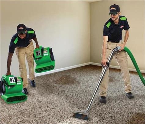 Carpet Cleaning and Upholstery Cleaning Servpro