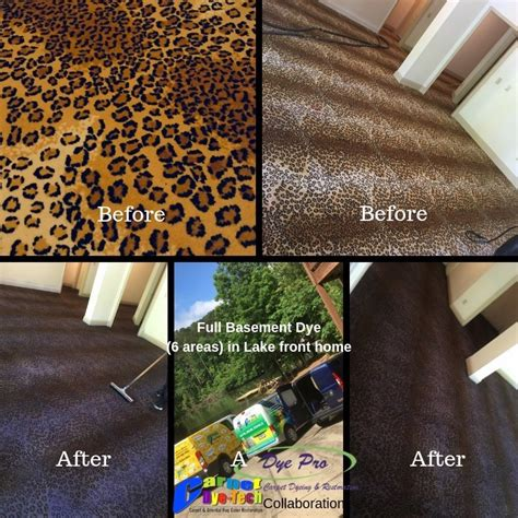 Carpet Dyeing Pennsylvania New York and New Jersey
