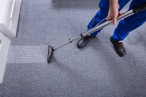 Carpet Steam Cleaning Melbourne The Squeaky Clean Team