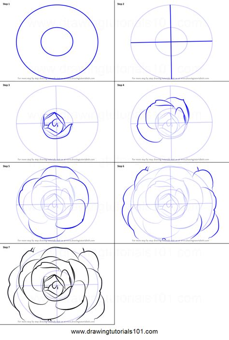 Cartoon Flower Step by Step Drawing Lesson