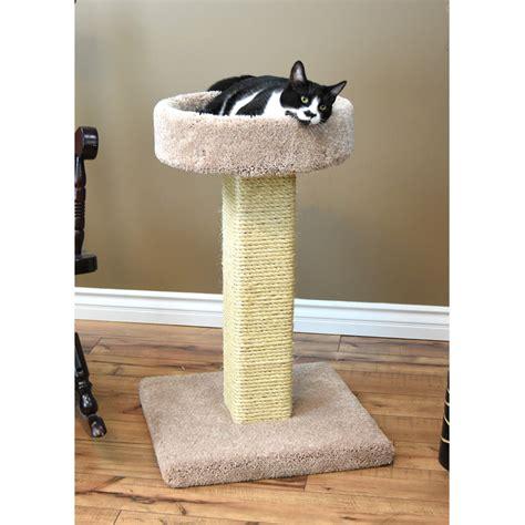 Cat Trees Cat Scratching Posts Great Deals on Cat