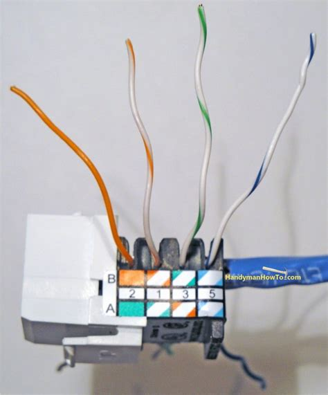 cat5e wall plate wiring diagram images cat5e wall mount wiring diagram suagrazia