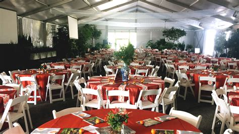 Chairs AAA Party Rentals