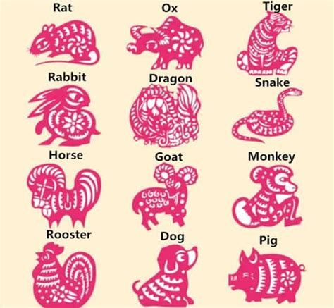 Chinese Zodiac Signs Astrology Club