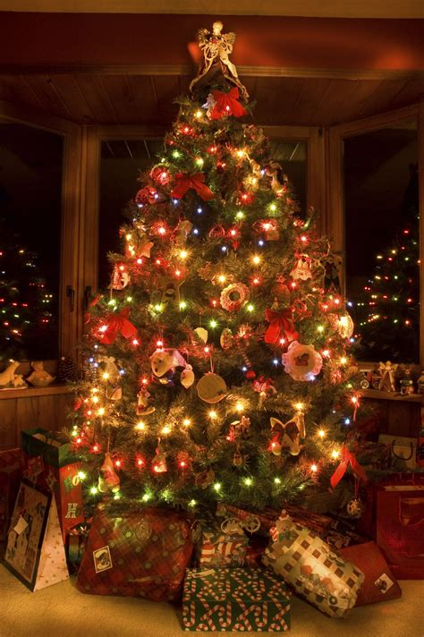 Christmas Trees Christmas Lights and Decorations from