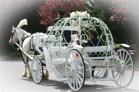 Cinderella Carriage White Horse Wedding