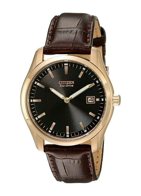 Citizen Eco Drive Men s Stainless Steel Watch with Brown