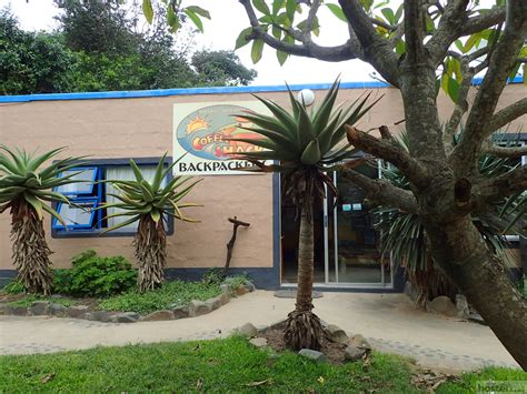 Coffee Shack Backpackers hostel accommodation Coffee