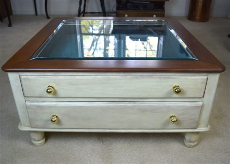 Coffee Table Display Case Beso