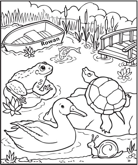 Coloring Pages Life At The Pond