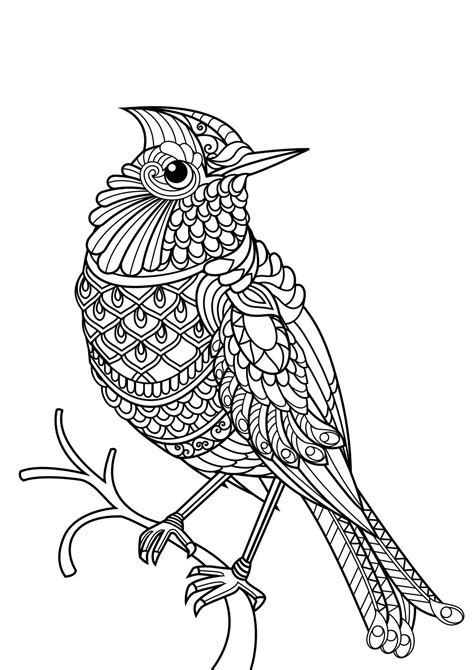 Coloring Sheets and Pages INDIF