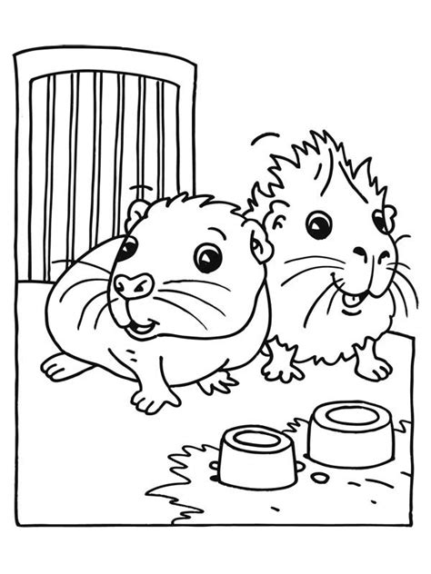 Cute Guinea Pig coloring page Free Printable Coloring Pages