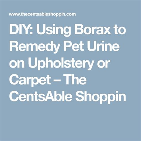 DIY Using Borax to Remedy Pet Urine on Upholstery or Carpet