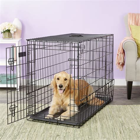 Dog Crate Series Compare Midwest Dog Crate Series