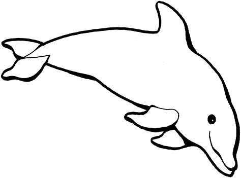 Dolphin Coloring Page Free Dolphin Online Coloring