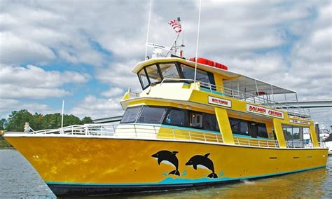 Dolphin Watching Cruise Sunset Lady Dolphin Tours The