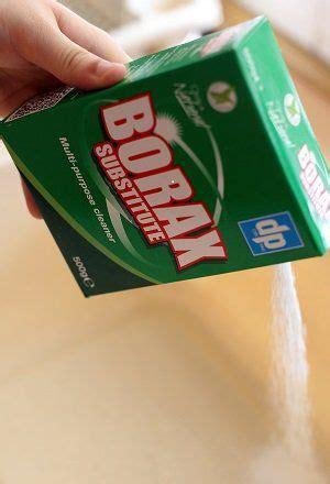 Dri Pak Borax Big Green Smile