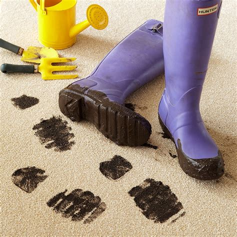 Easy Clean Stain Resistant Carpets Carpet Types