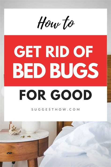 Easy Steps to Get Rid of Bed Bugs Permanently The Bug Squad