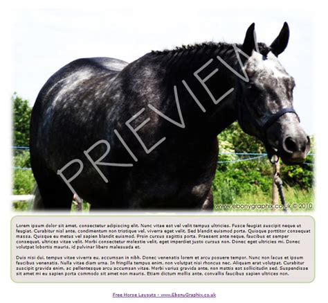 EbonyGraphix One of the best online horse layout resources