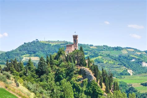 Romagna Mia Accordi image 12