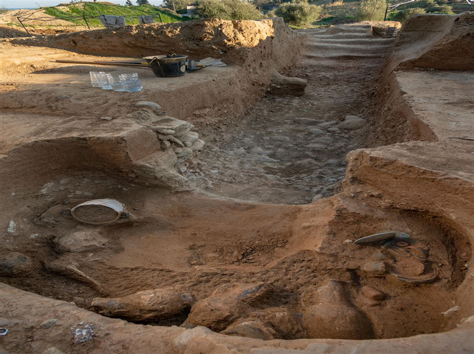 Pianetino Rino nella Storia Etruschi image 1