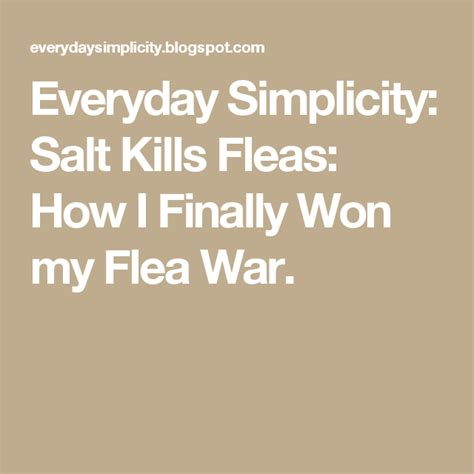 Everyday Simplicity Salt Kills Fleas How I Finally Won