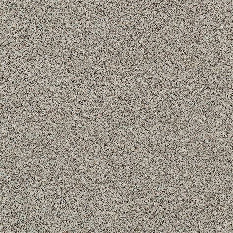 Expeditious II Color Pleasing Texture 12 ft Carpet