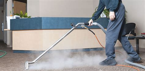 Expert Carpet Cleaning Services in Delaware Hot Steam
