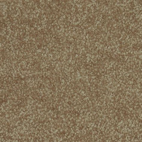 FHA Approved Textured Carpet Best Price