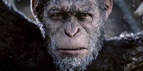 Facts About The Planet Of The Apes Franchise Screen Rant