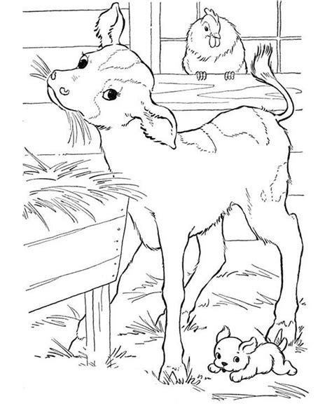 Farm Animal Coloring Pages Raising Our Kids