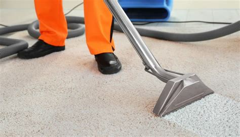 Feminine Touch Cleaning Carpet and Upholstery Cleaners