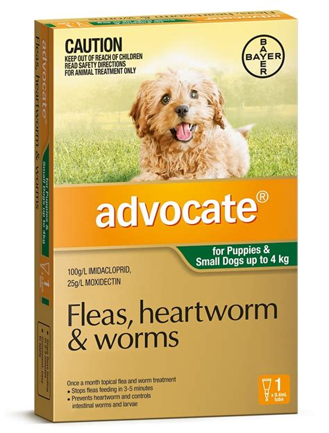 Fleas on Dogs Dog Fleas Best Flea Treatment Control