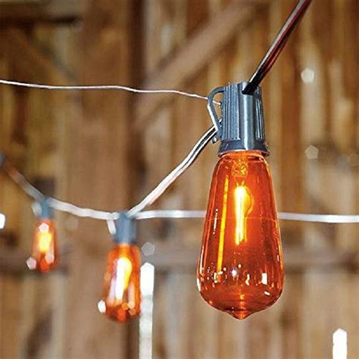 Flicker Flame Edison Bulb Lights Grandin Road