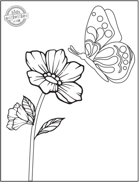 Flower Coloring Pages for Kids ProFlowers Blog