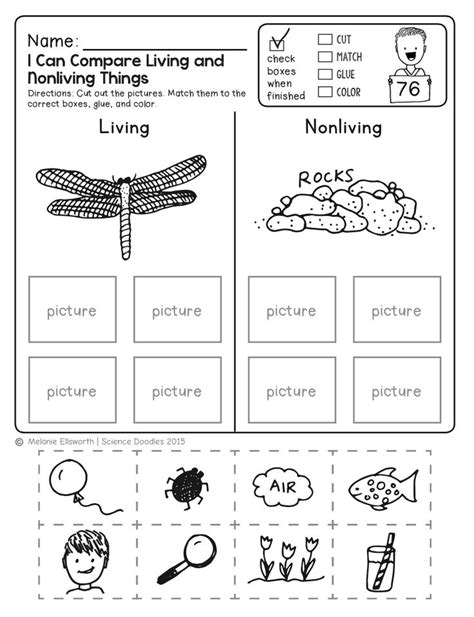 Free Elementary Science Worksheets and Printables