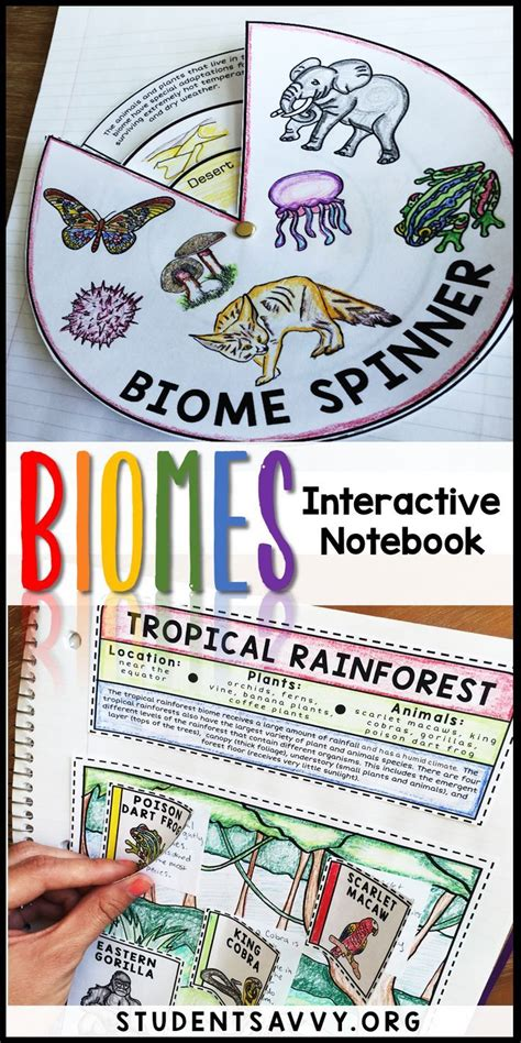 Free interactive educational elementary science activities