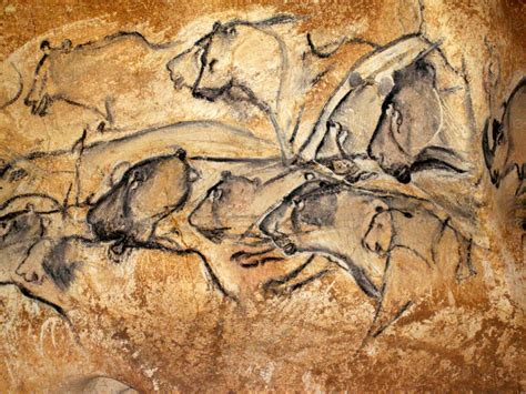Gallery of Cave Art Paintings from the Chauvet Cave