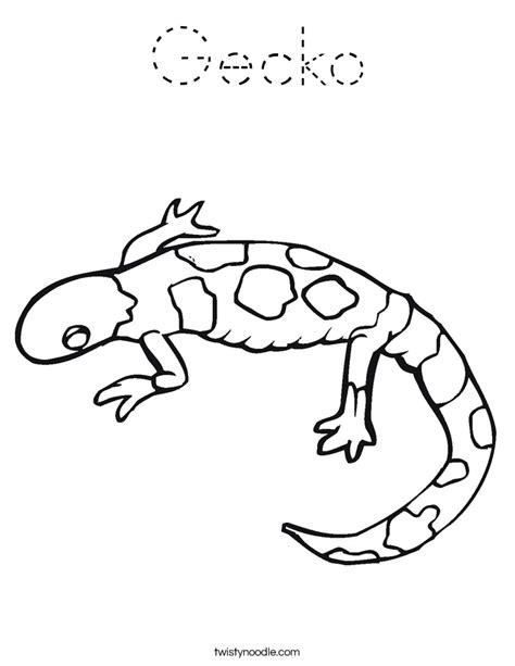 Gecko Coloring Page Twisty Noodle