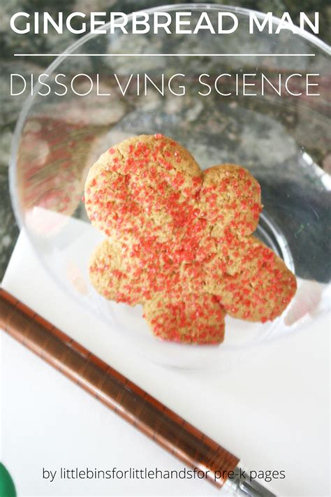 Gingerbread Man Pre K Pages