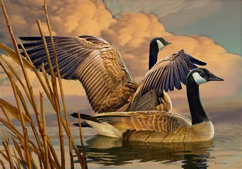 Goose pictures original paintings and prints for sale