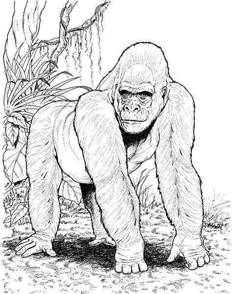 Gorilla Coloring Page crayola