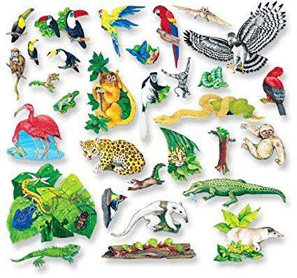Habitat Series Rainforest Themed Printables Freebies and