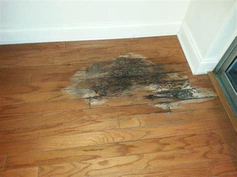 Hardwood Floor Drying Water Damaged Wood Floors Water