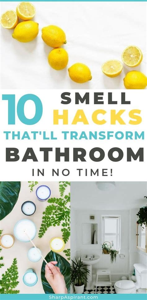 Here s How to Make Your Bathroom Smell Great
